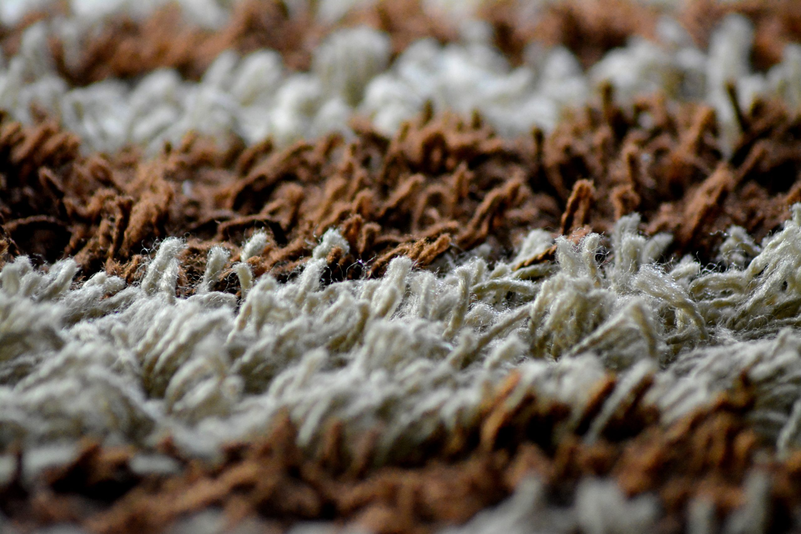Everything You Need To Know About The Outdoor Carpet